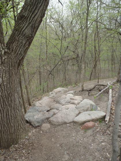 Rock Garden at Murphy